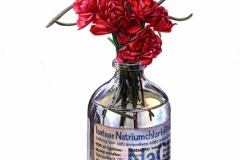 Wild-Rose-in-Bottle